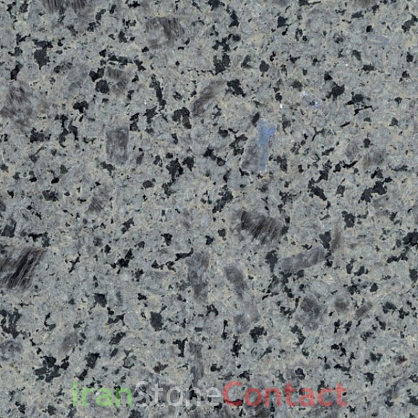 Dolphin Granite