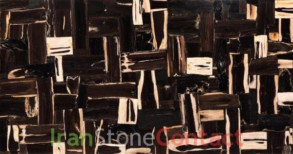 Black Petrified Wood – Retro